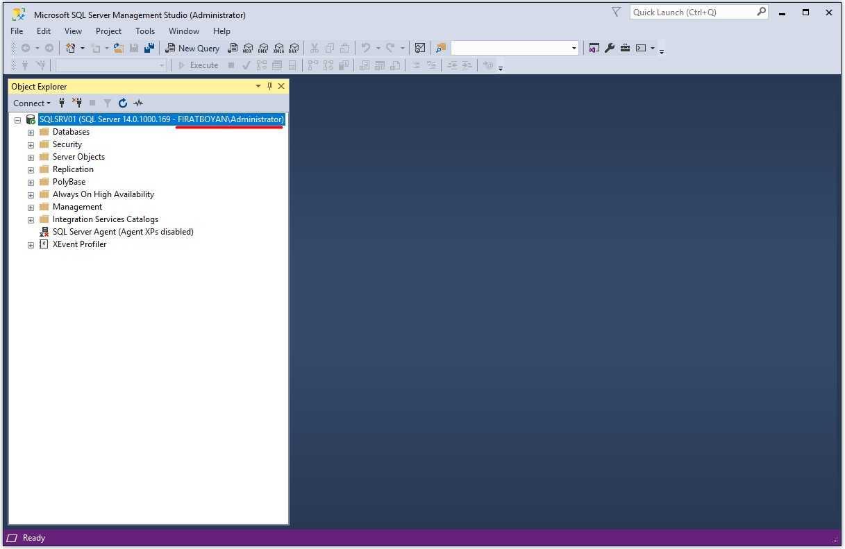 Microsoft SQL Server 2017 Standard Lisansı